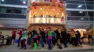 University of Guelph CBSSC Lipdub