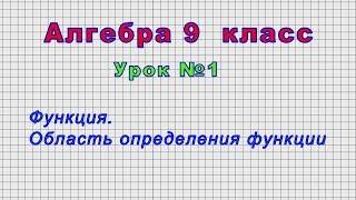 Алгебра - 9 класс (Урок№1 -   Функция. Область определения функции)