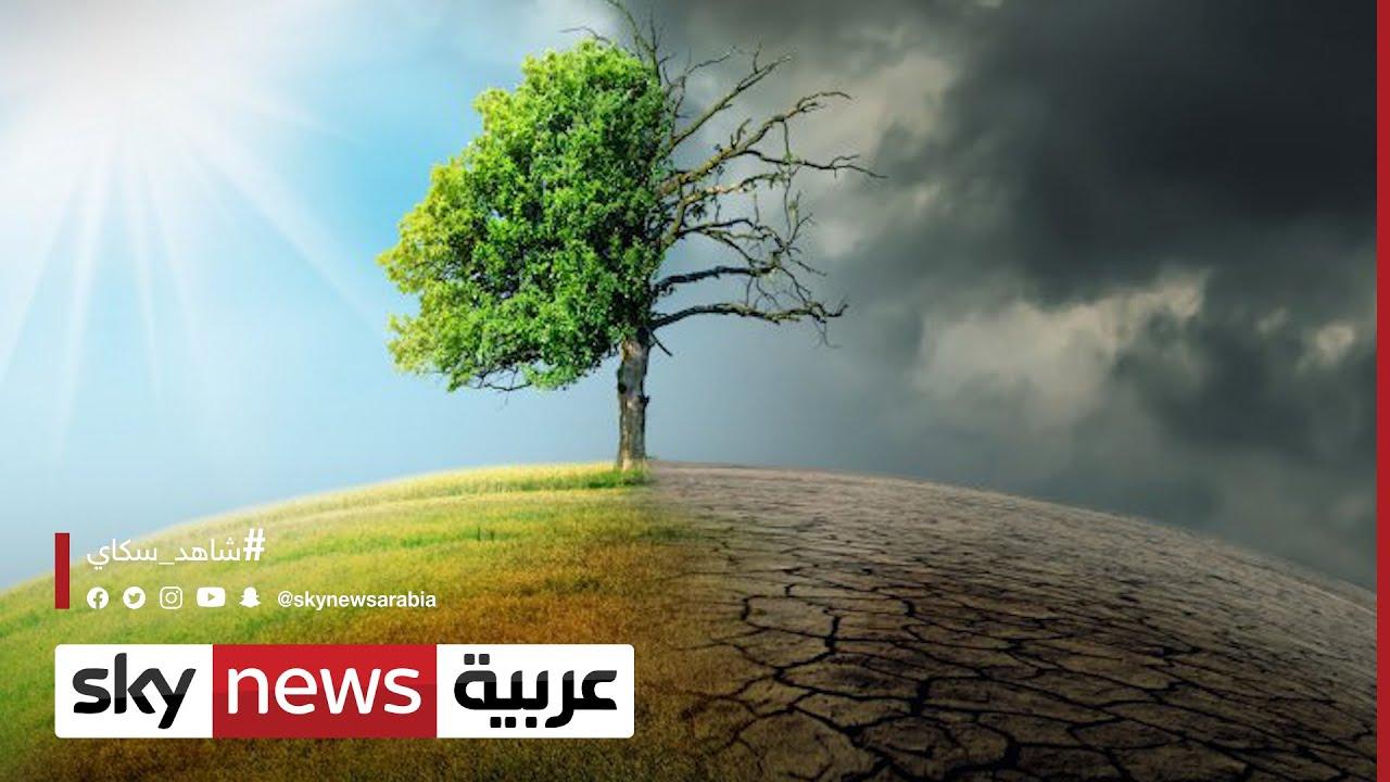 عمر البدوي: الدول العربية معرضة للتصحر رغم تدني معدلات الانبعاثات الكربونية | #الاقتصاد  - نشر قبل 12 ساعة