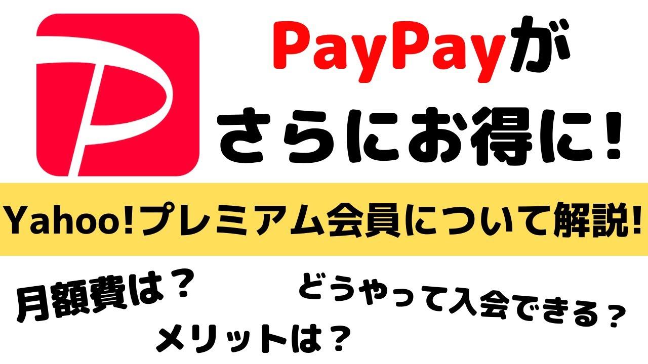 Paypay お 得 な 使い方 【完全保存版】PayPay全解説!使い方からお得な活用法、注意点まで。