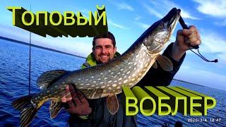 МЕГА Воблер Вторая рыбалка второй ТРОФЕЙ Ловля щуки на воблер Щука 2020