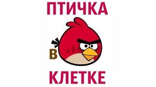 The Angry Birds Movie Illusion 🐤#️ Фокус ПТИЧКА В КЛЕТКЕ(Несложный фокус, который легко повторить. По мотивам игры и мультфильма Angry Birds. ___ Оптическая иллюзия СТРЕЛ..., 2016-07-15T17:49:50.000Z)