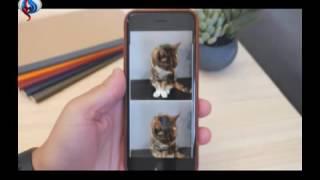تطبيق لتحويل صور آيفون الحية إلى صور GIF متحركة