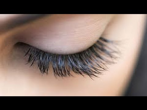 1c412815fb1 how to grow lashes naturally how long does it take for eyelashes to grow  back