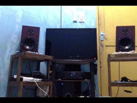 My DIY bookshelf speaker sing  tweeter vifa xt25sc90  woofer vifa P17