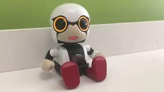 Робот впервые в России. Познакомься с ним на Фестивале Роботов thumbnail