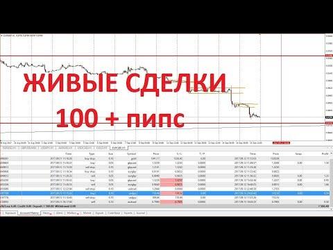 Торговля на форекс в прямом эфире forex combo system 3.0 4in1