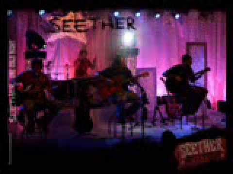 Seether- Needles (with lyrics)