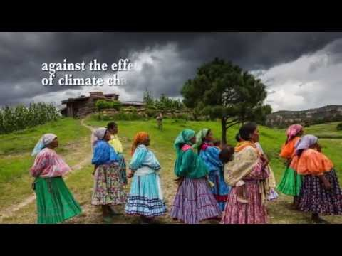 Our multifunctional landscapes: Global Landscapes Forum