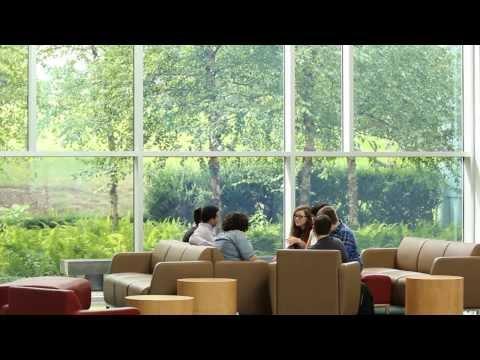 New undergraduate business program among most popular at Brandeis