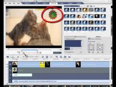 شرح برنامج Ulead VideoStudio 10 الدرس التالت