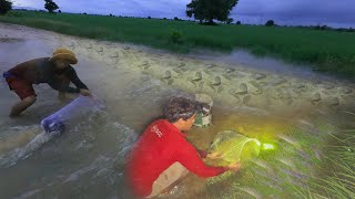 Top 2 Fishing On The Road 2020 Smart Man Find Catch A Lot Of Fish During Water Flood tyriq 1256