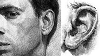 КАК  ПРОСТО нарисовать УХО человека карандашом