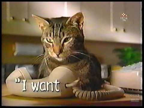 Meow Mix | Television Commercial | 1999
