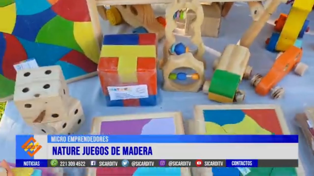 MICRO EMPRENDEDORES: Hoy Nature, juguetes en madera
