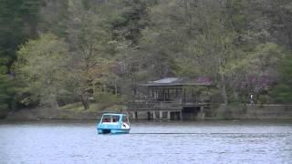 京都・宝ヶ池公園
