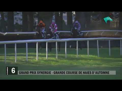 20190920 C6 Grand Prix Synergie - Grande Course de Haies d'Automne