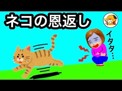 猫��返�★ ケー�ゃん�助�られ�猫��礼�...�︎