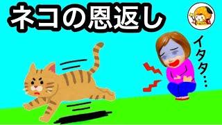 猫の恩返し★ ケーちゃんに助けられた猫のお礼は...❤︎