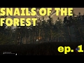 Snails of The Forest Ep.1