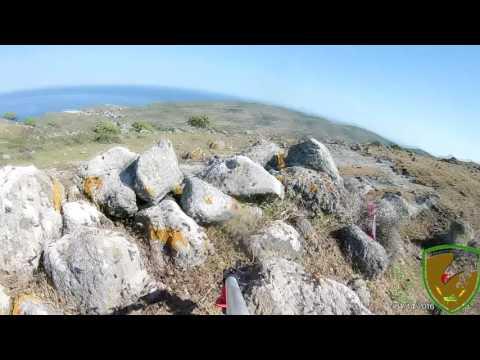 Agios Efstratios Locust swarm raw footage