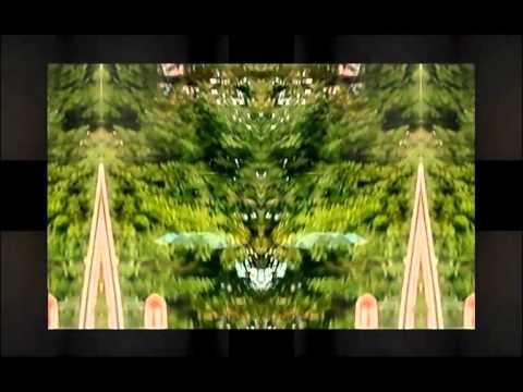 Freund der Familie - Symbian (Christopher Rau Remix) Mp3