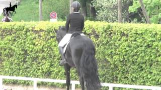 24.05.2015 Concours de dressage /Centre Equestre Finger La Chaux-de-Fonds