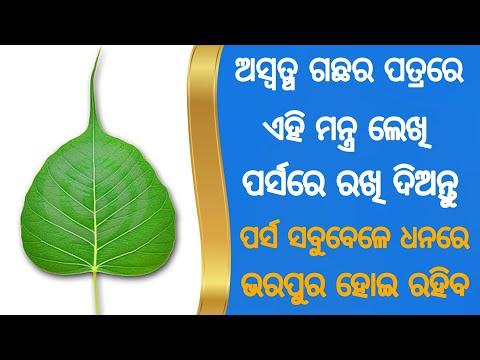 Odia | Osta Patra Re Ehi Mantra Lekhi Parsa Re Rakhi Diantu Parsa Sabubele Dhana Re Vari Rahiba