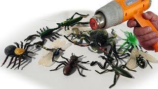 Насекомые жуки букашки против строительного фена. Видео ЭКСПЕРИМЕНТ для детей. Детские игрушки