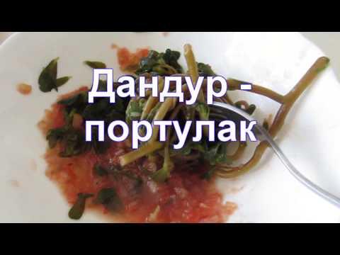 Дандур  (портулак) - готовлю Армянскую (грузинскую) закуску