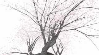 Repeat youtube video Cherry Blossom VR Cardboard