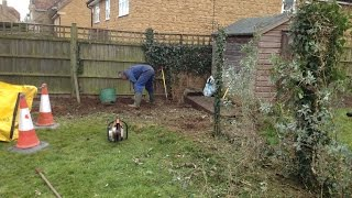 Seavington St Michael, Ilminster, Somerset, Garden Green Waste Clearance, Tree Cutting