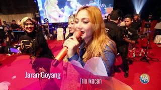 Triomacan - Jaran Goyang (LIVE Dondang Muara Jawa, Kalimantan Timur)