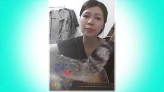 Hoa Xứ Nhà Nàng Cover - Nguyễn Thị Thanh Trang(Mimosa)