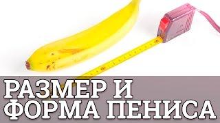 Имеет ли значение размер и форма пениса || Юрий Прокопенко(Имеет ли значение размер и форма пениса О пенисе пишут чаще, чем о поп-звёздах. Но нередко взгляды на этот..., 2017-01-26T16:08:19.000Z)