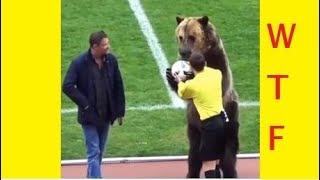 Football, Soccer Fails