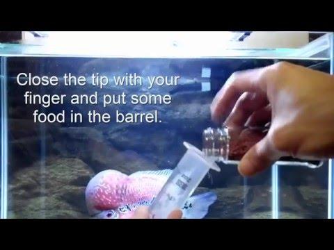 Make Floating Fish Food Sink in 5 Seconds.  Cichlid food, gold fish food.