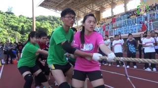 2015 2016 可風中學嗇色園主辦 第41屆田徑運動大會