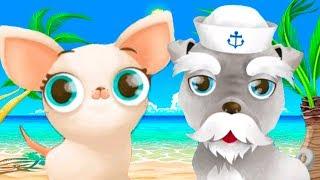 МИСС ГОЛЛИВУД в Отпуске с милыми животными. Кошки и собаки вместе с Кидом в мультяшной игре