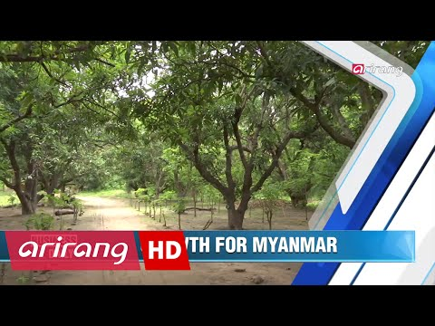 Business Daily(Ep.315) Korean aid to boost Myanmar's potential _ Full Episode