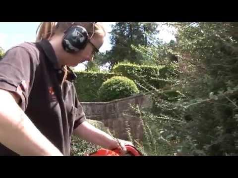 Volunteering At Biddulph Grange Garden