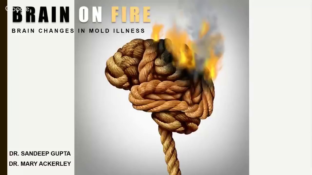 Brain on Fire - Brain Changes in Mold Illness with Dr  Mary Ackerley