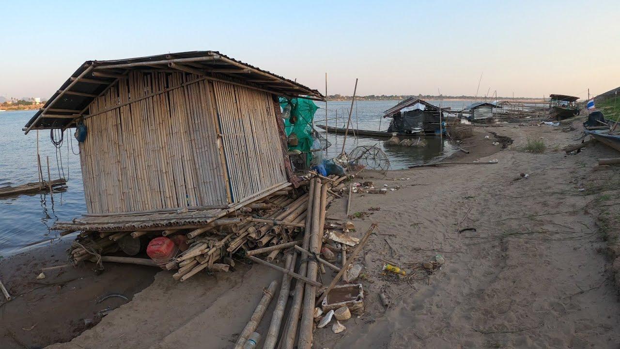 น้ำโขงลด เดินไปกลางแม่น้ำโขงยังไม่ถึงหัวเข่า สวนผักหาปลาวิถีคนริมโขง
