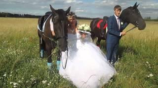 Свадебные приколы. Видео 1(продолжение в видео 2)