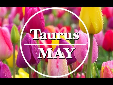 Taurus ♉️ May 2018 - Offers! Think This Through!
