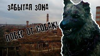 Забытая Зона: побег от собак на заводе! ЖЕСТЬ!!!