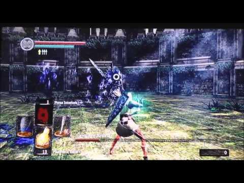 Dark Souls SL1 Artorias Boss Fight