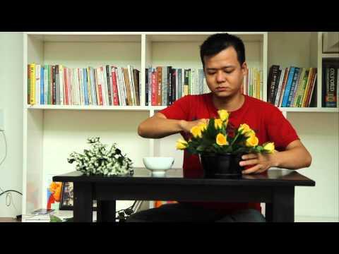 Hướng dẫn cắm hoa ngày tết