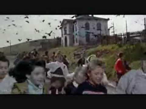 Wind Farms Killing PESKY BIRDS!