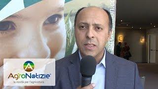 De Sangosse: un futuro di innovazione e sostenibilità